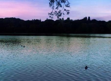 Westport Lake Meet