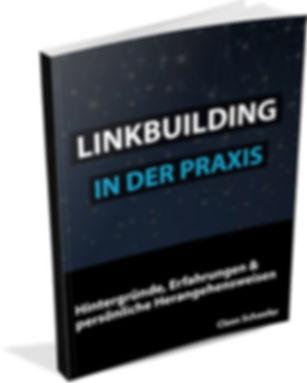 Backlinks-aufbauen-Claas-Schaefer1-Kopie