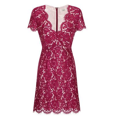Ambar magenta dress