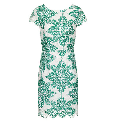 Diane dress in green and white