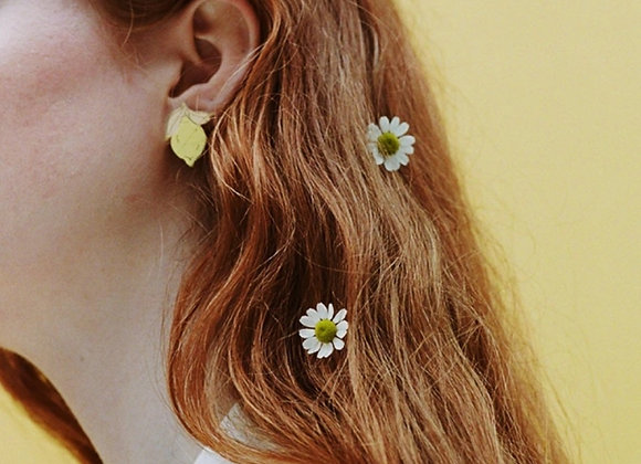Boucles d'oreilles Citrons -Wolf and Moon