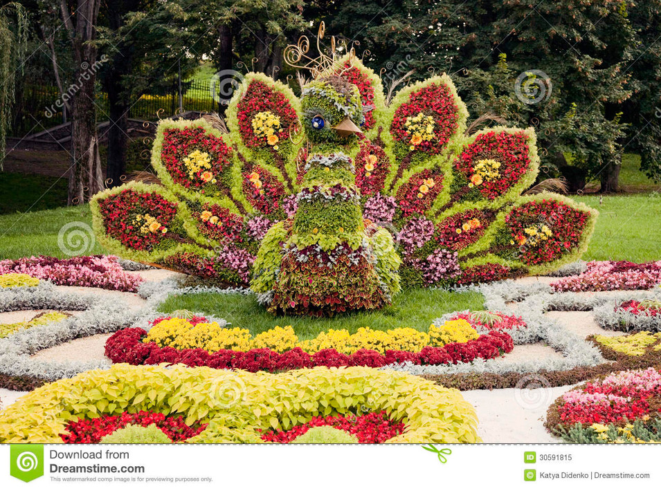 bright-colorful-peacock-flower-sculpture