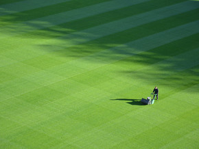 Is it time to mow the lawn again? A male perspective on Christmas