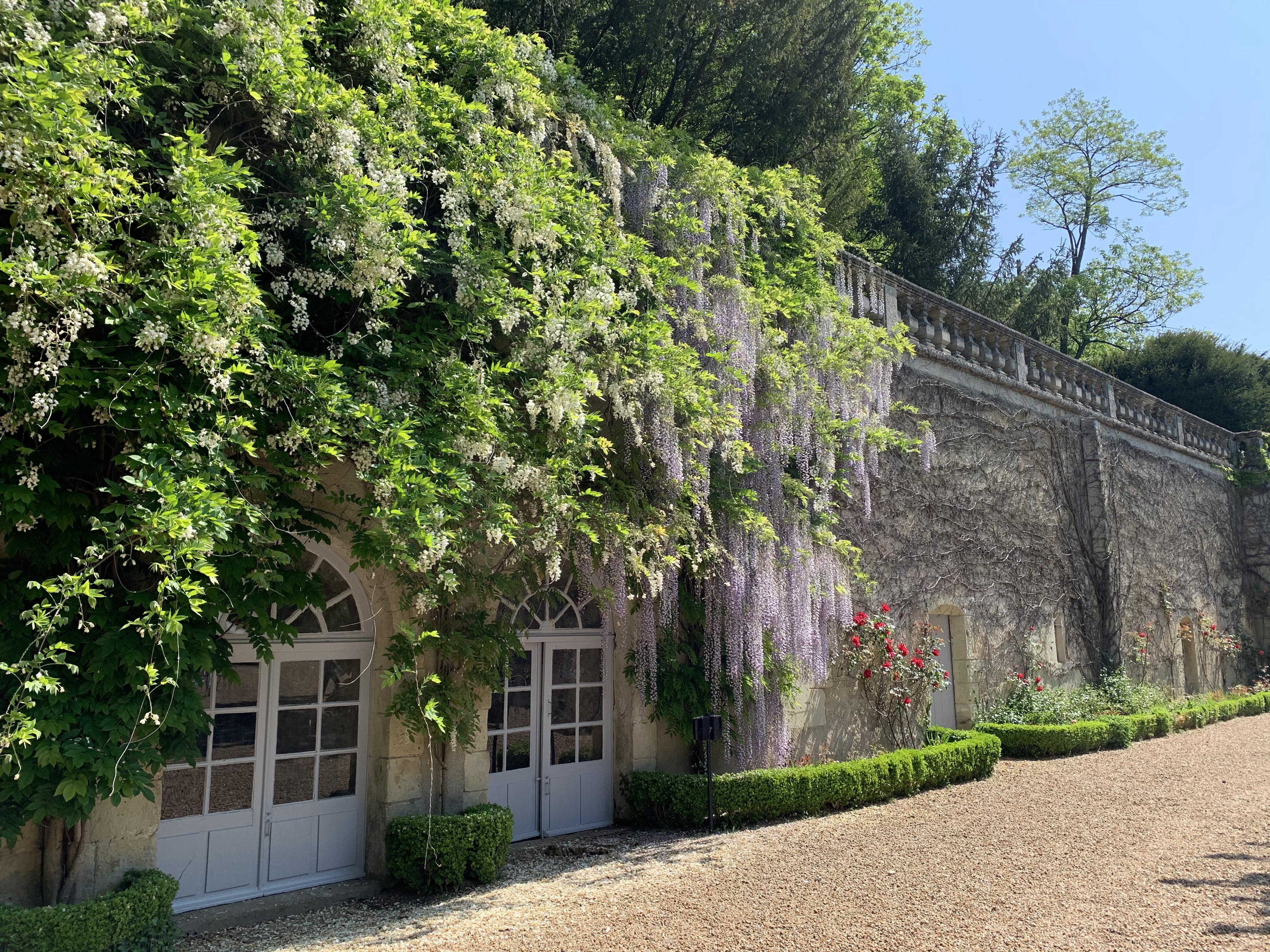 Parc_du_château