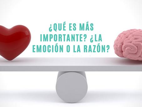¿Qué es más importante? ¿La emoción o la razón?