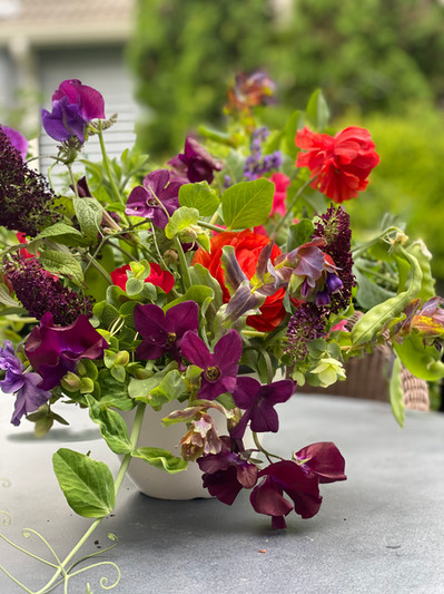 Sweet Peas and Green Pea Vegetable Pods