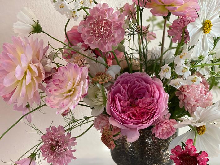 Roses, Scabiosa, Anemones, Cosmos, Verbascum, Dahlias and Asters