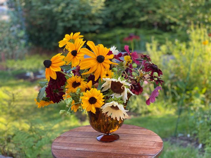 Rudbeckia, Cosmos and Sunflowers