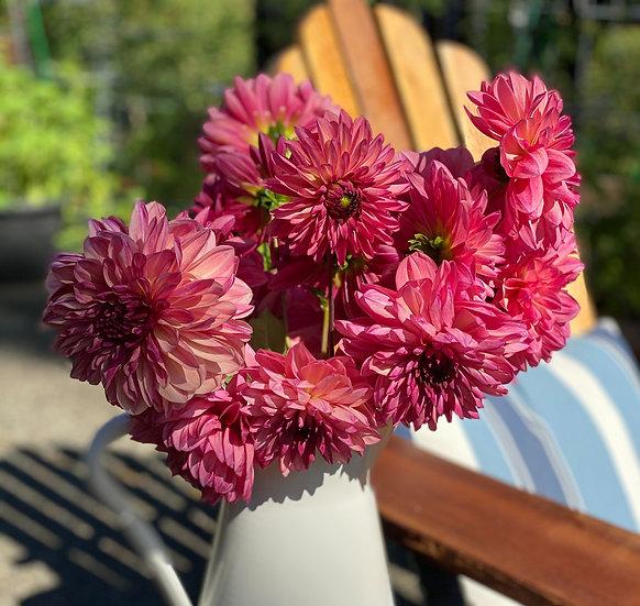 Late Summer Cut Flower Subscription (6wks)