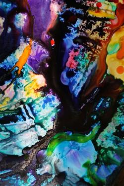 Vanessa Aves image 4.jpg ok