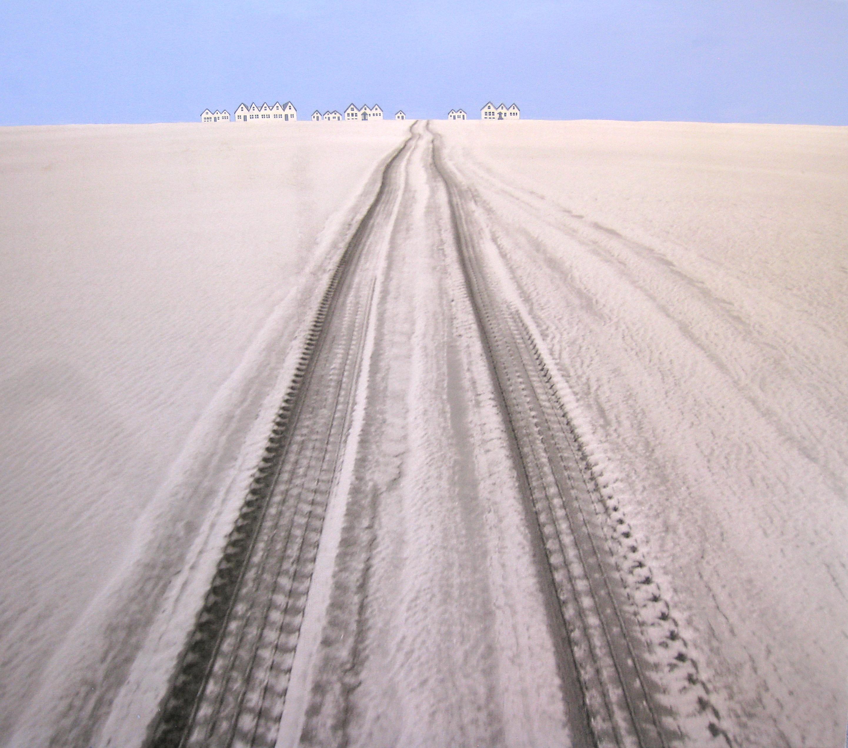 Jacqueline Moses 13 Iceland-Ingolfshofdi Black Sand Beach (2)
