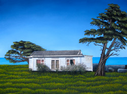 Jacqueline Moses 12 New Zealand Hector-west coast of south island 24__x18__