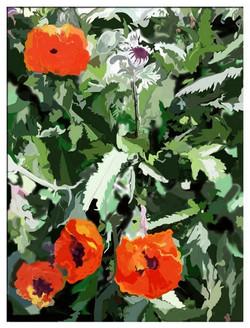 Peter Schachter Flowers in Kent2