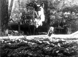 Eric Demattos Blue-Jump