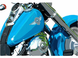 Peter Schachter Real Teal Harley