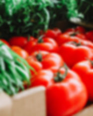 red-tomatoes-1367243.jpg