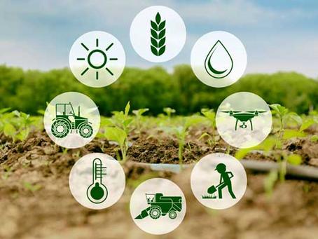 Conheça mais sobre assistência técnica rural