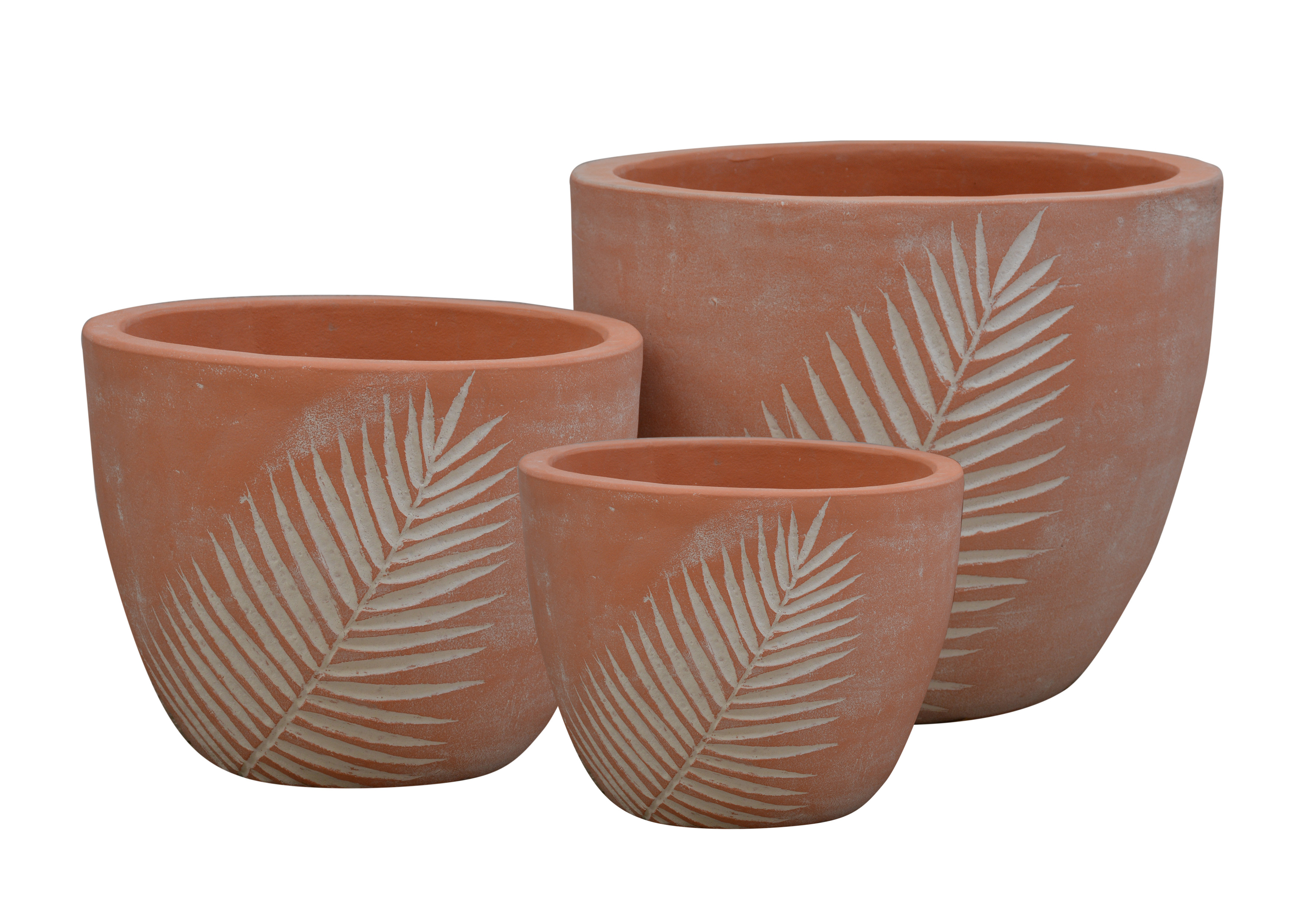 Pot feuille cycas  A1342212-3W