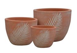 Pot feuille cycas  A1342212-3W