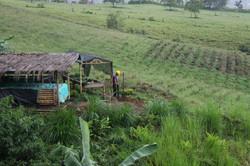 construcción de camas de germinación