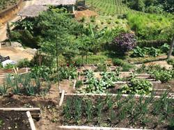 huerta, reforestación, lombricultivo
