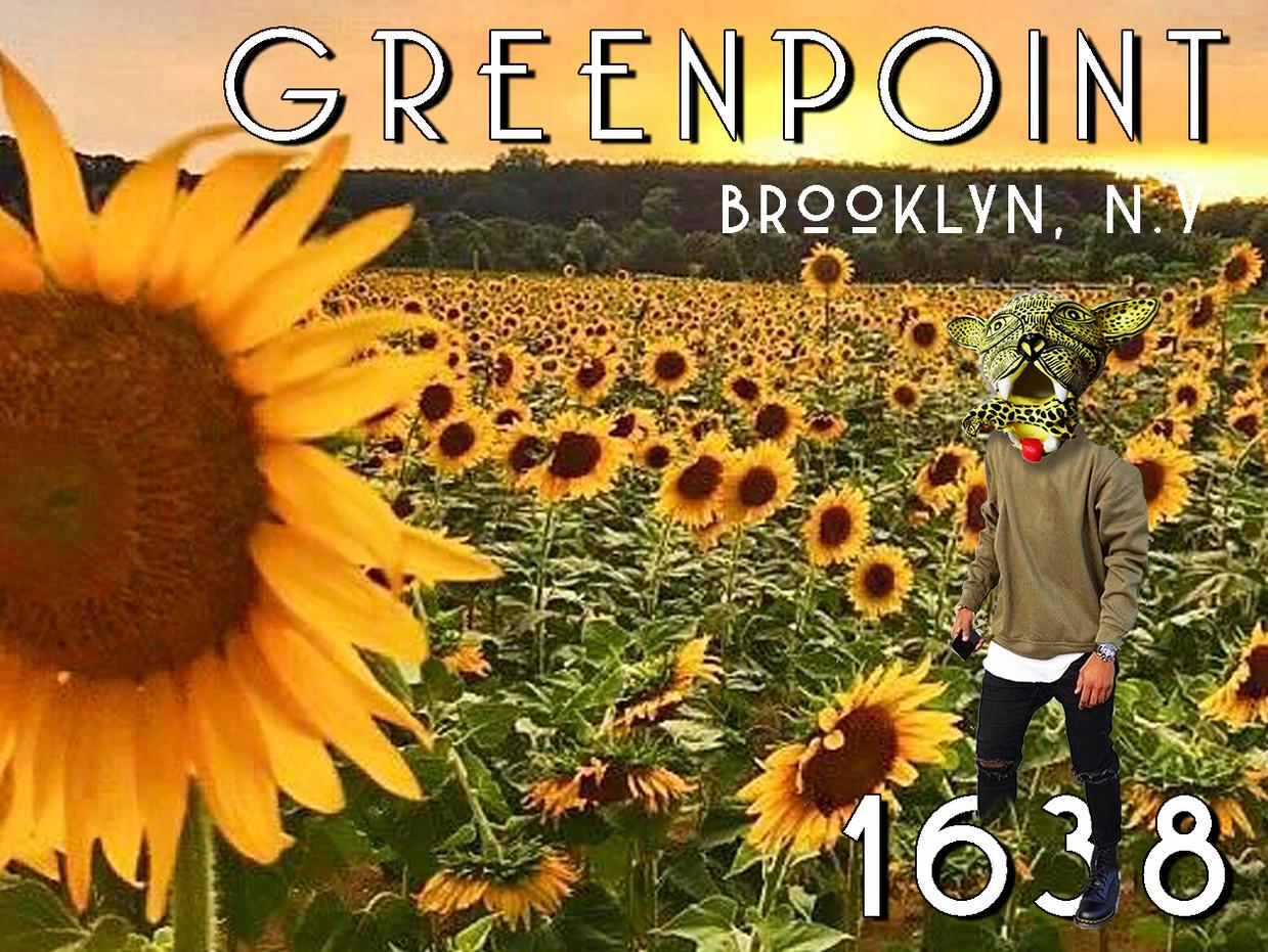 sunflower field postcard.jpg