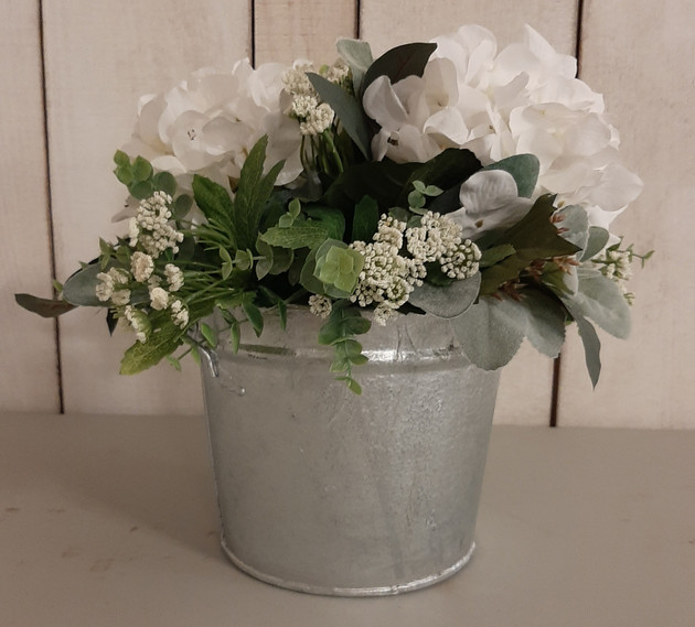 Table Hydrangea in Bucket