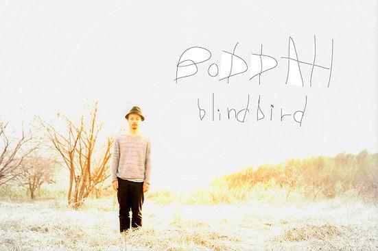 Blind%20Bird3.17.jpg.svg.jpg