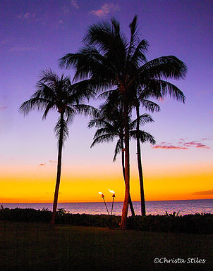 """""""Purple Luau"""" limited and numbered print, matted"""