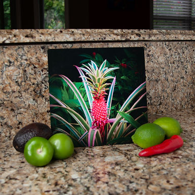 """Pink Pineapple"" Limited Edition Print on Metal"