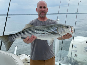 Lake Hartwell Fishing Report - April 1, 2021