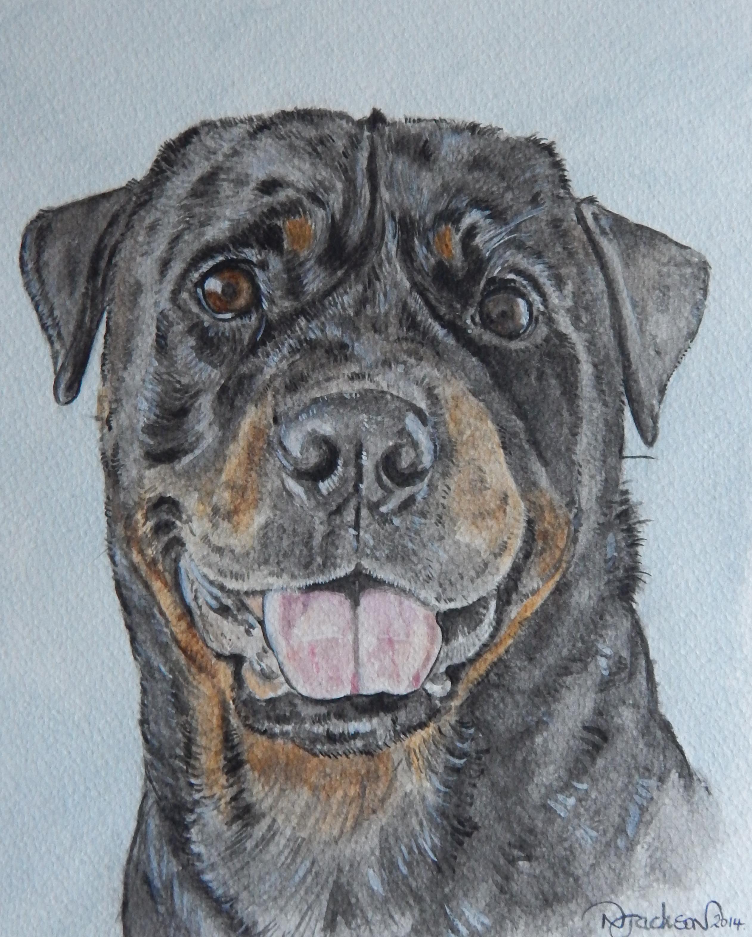 Lennox Dobermain portrait