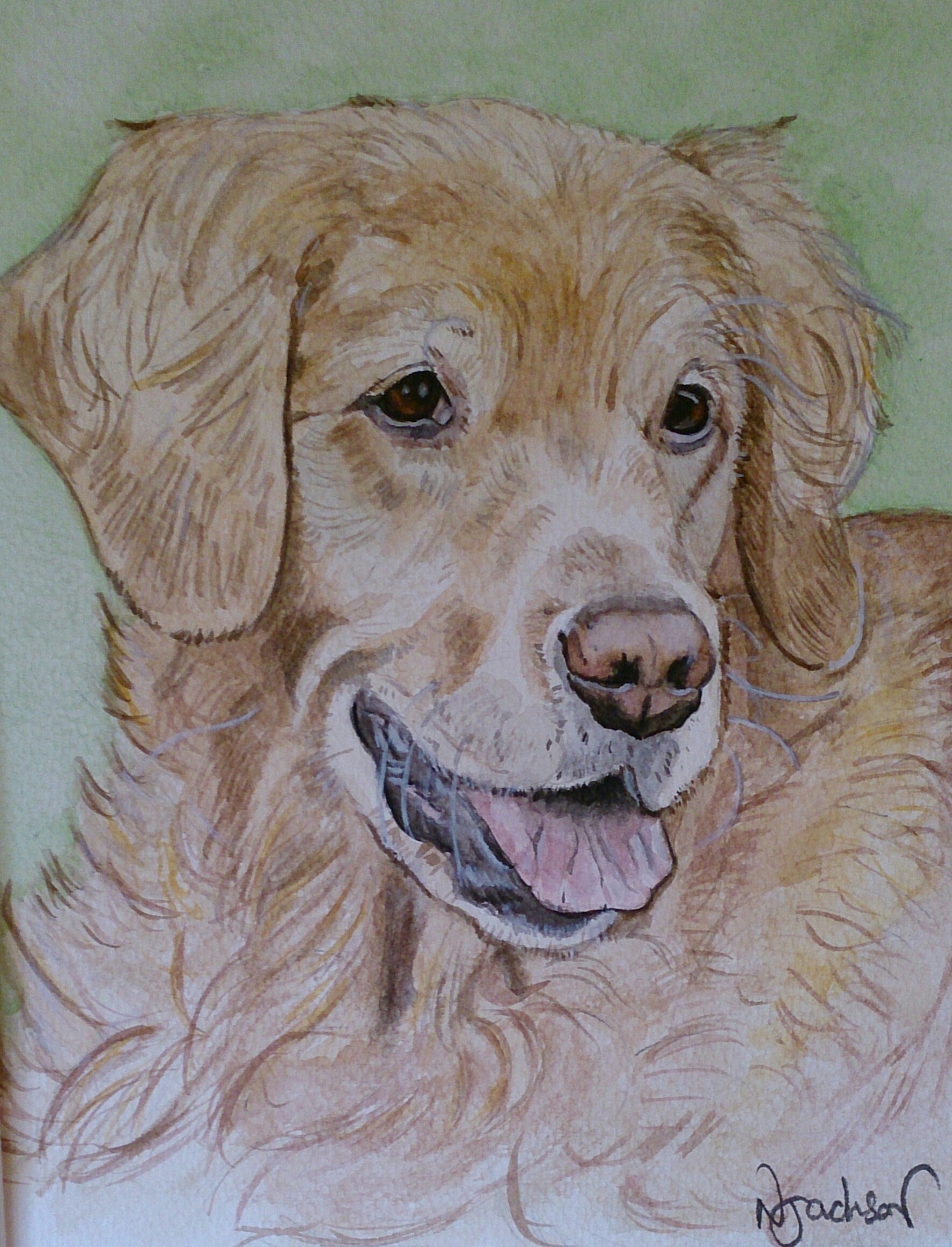 golden retriever watercolour
