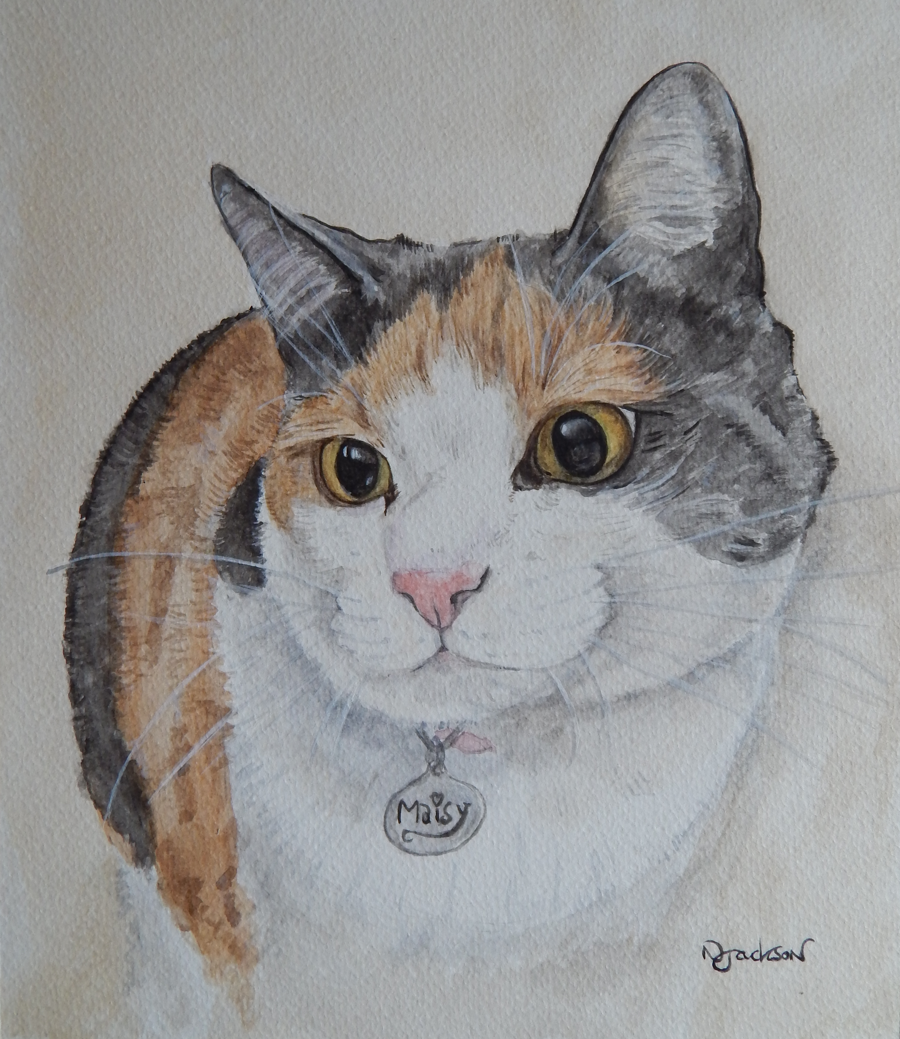Maisy cat portrait