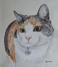 watercolour pet cat portrait