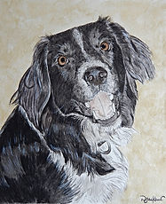 watercolour pet dog portrait