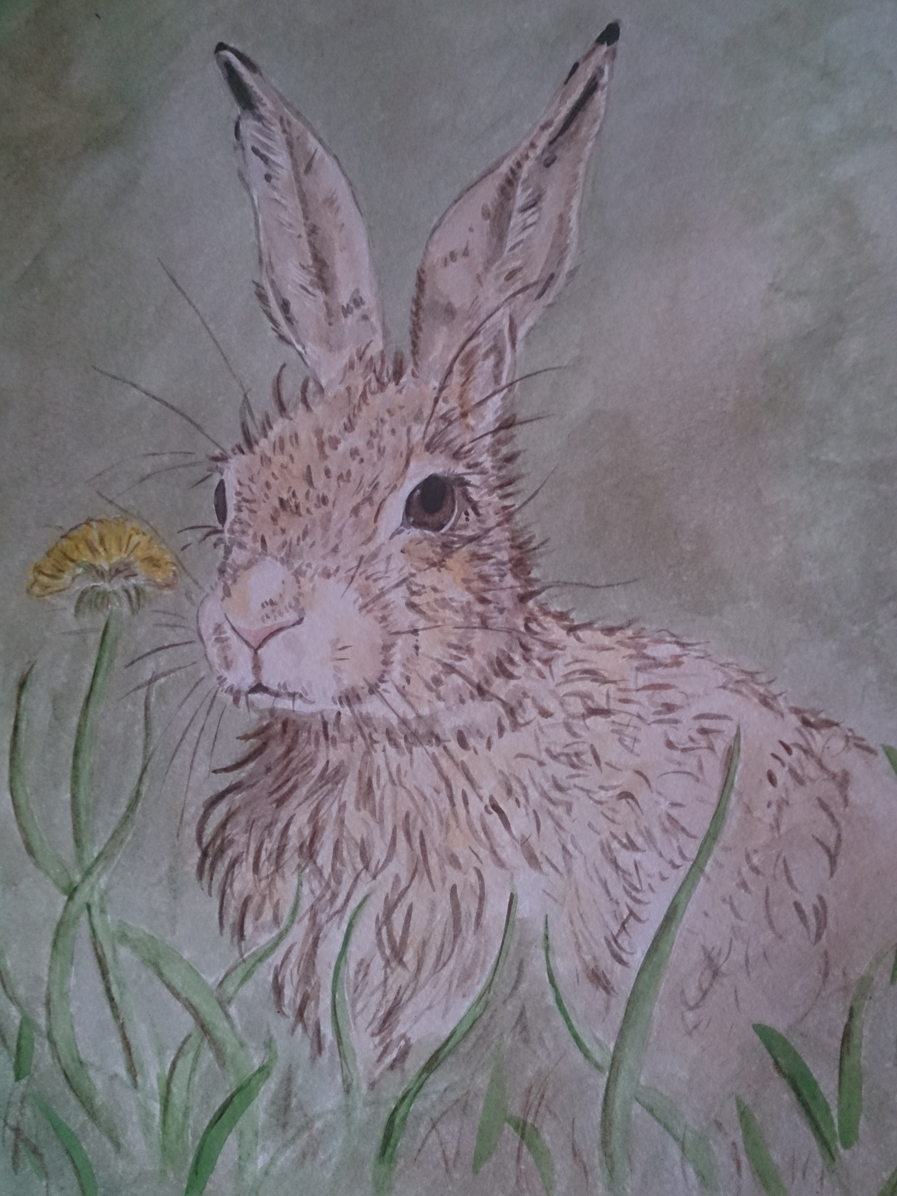 Hare with dandilion watercolour