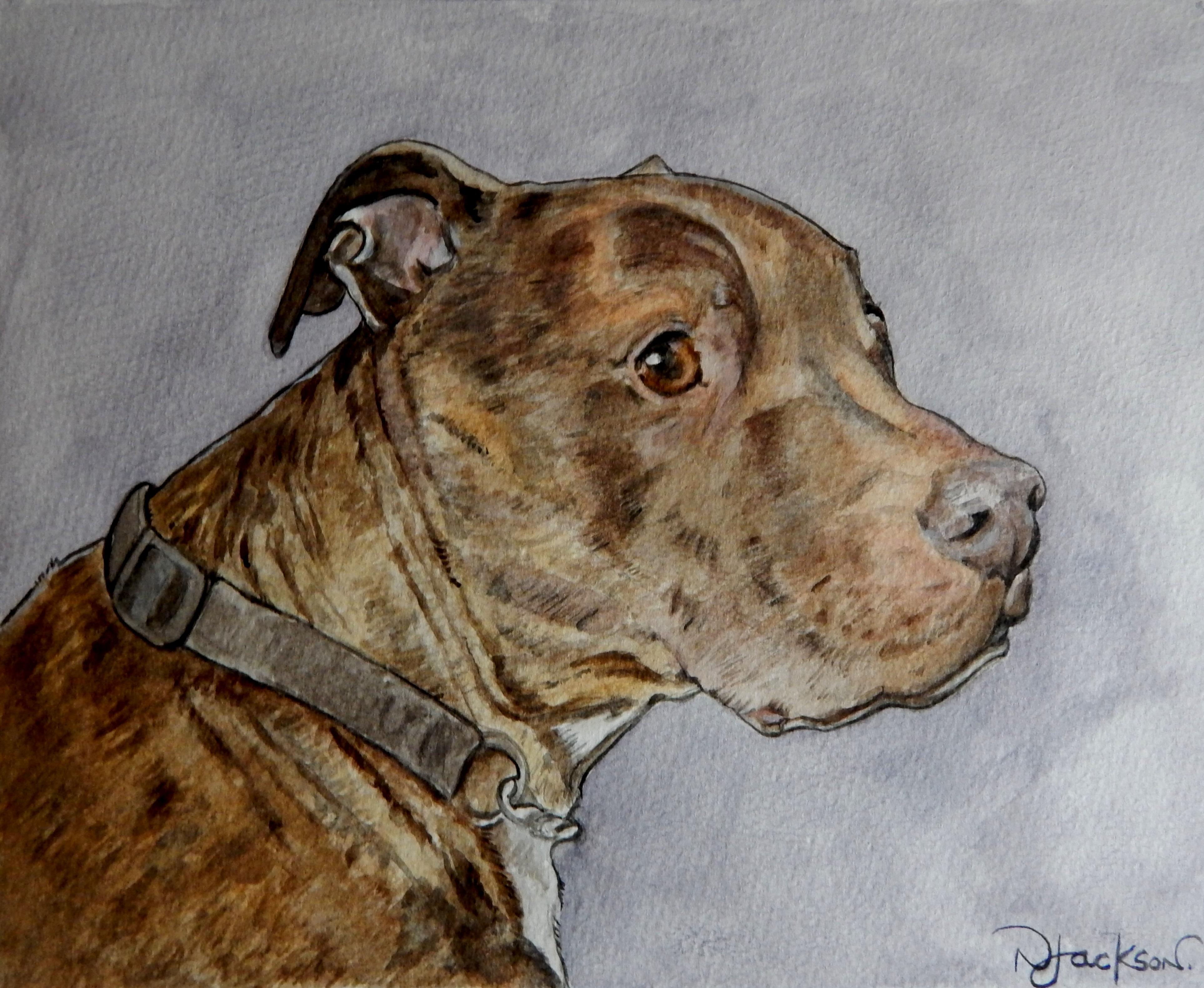 Hooch portrait