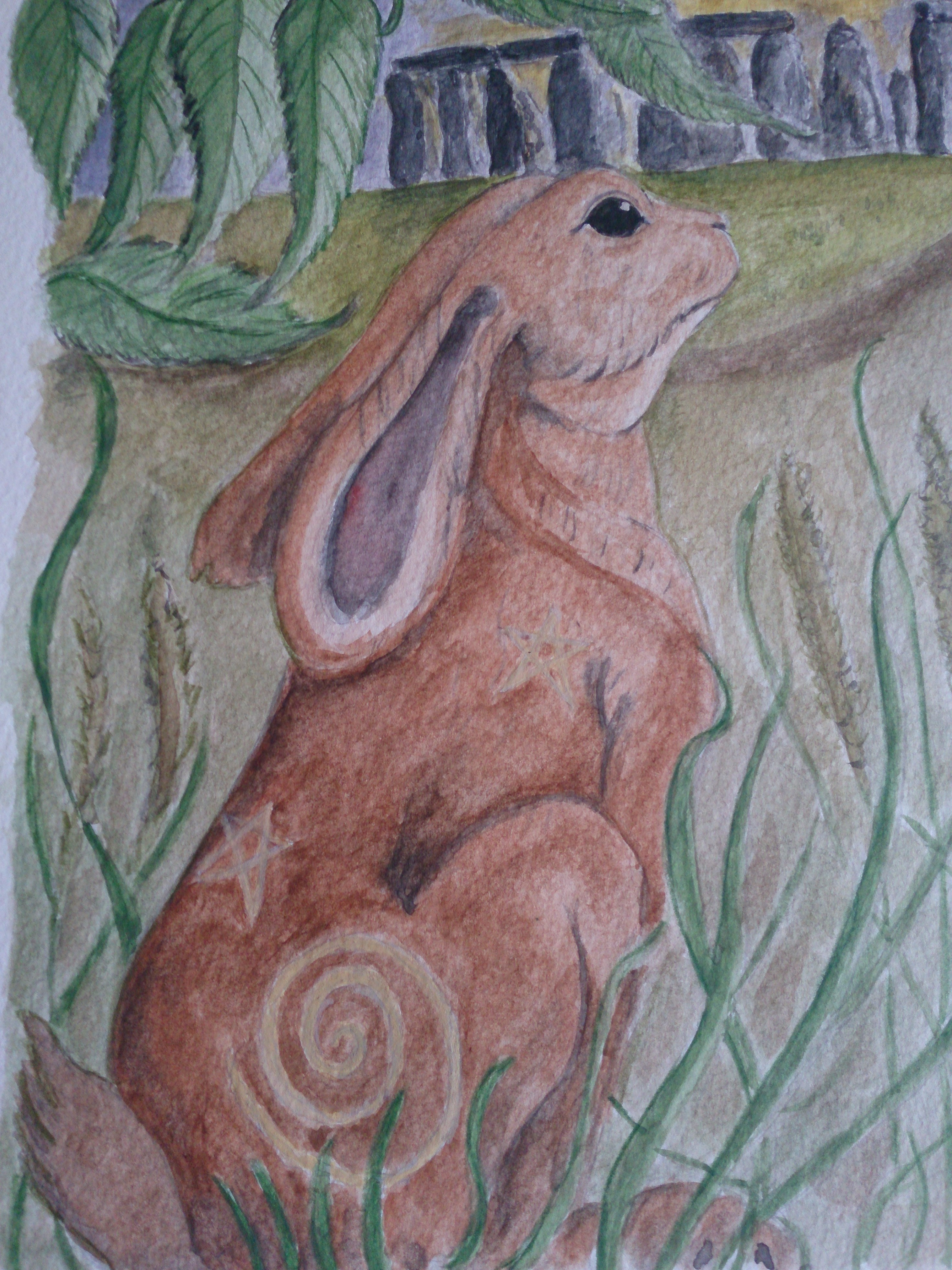 Star gazey hare summer soltice Stone