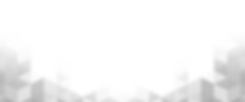bg-black-white-overlay