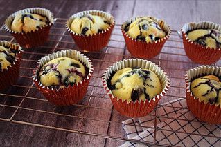 Lemon and Blueberry Muffins (SF and GF)