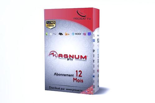 MAGNUM OTT FULL HD-4K, HD12 Mois
