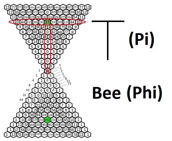 T-Bee.jpg