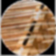 מונוקורד | monochord