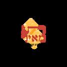 לוגו תג מאיר.png