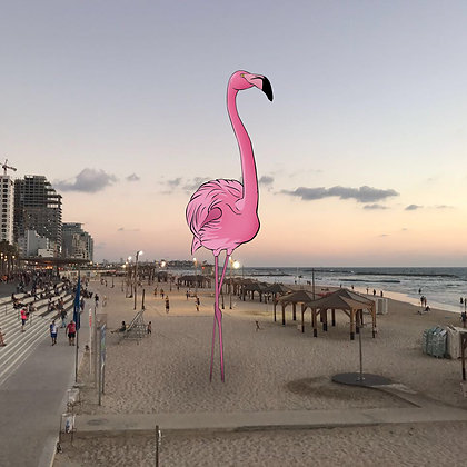Have a #pinkflamingo day