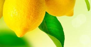 מרק לימונים מתוק/ סיפור קצר