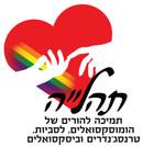 לוגו תהלה בווקטורי.jpg