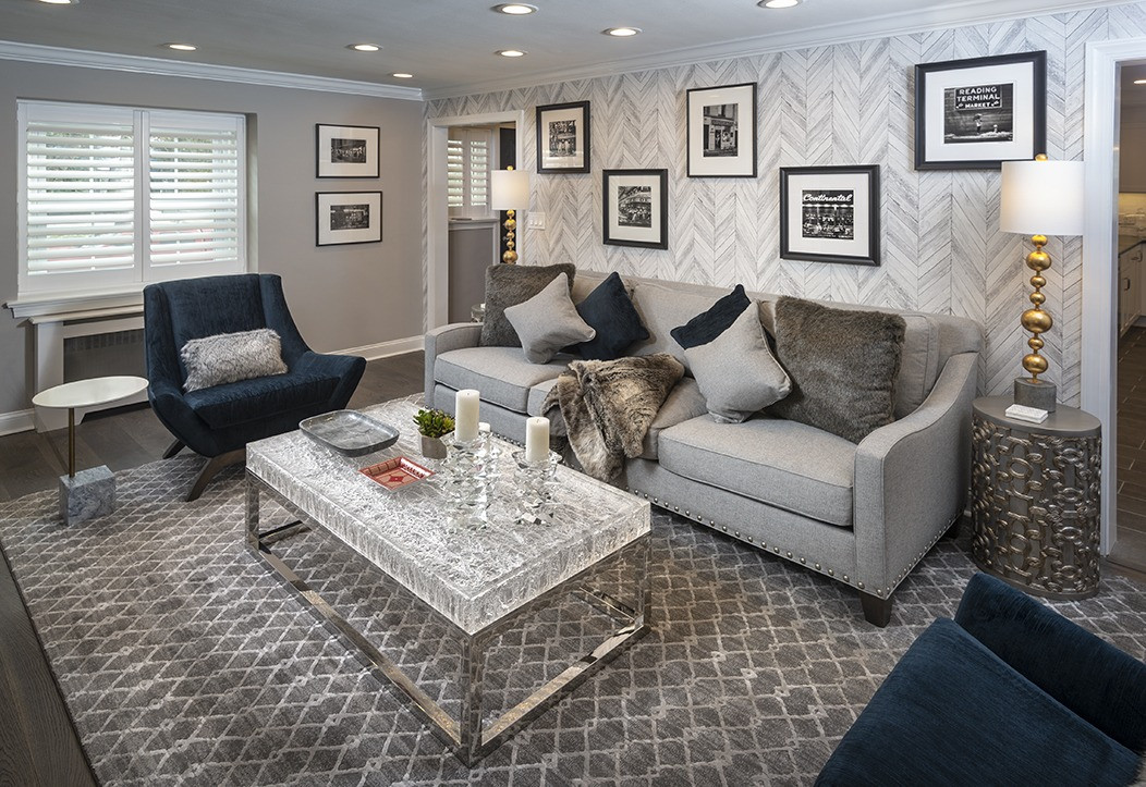 Wynnewood, PA: Moden Transitional Living Room