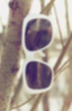 Eyeglass frames sunglasses